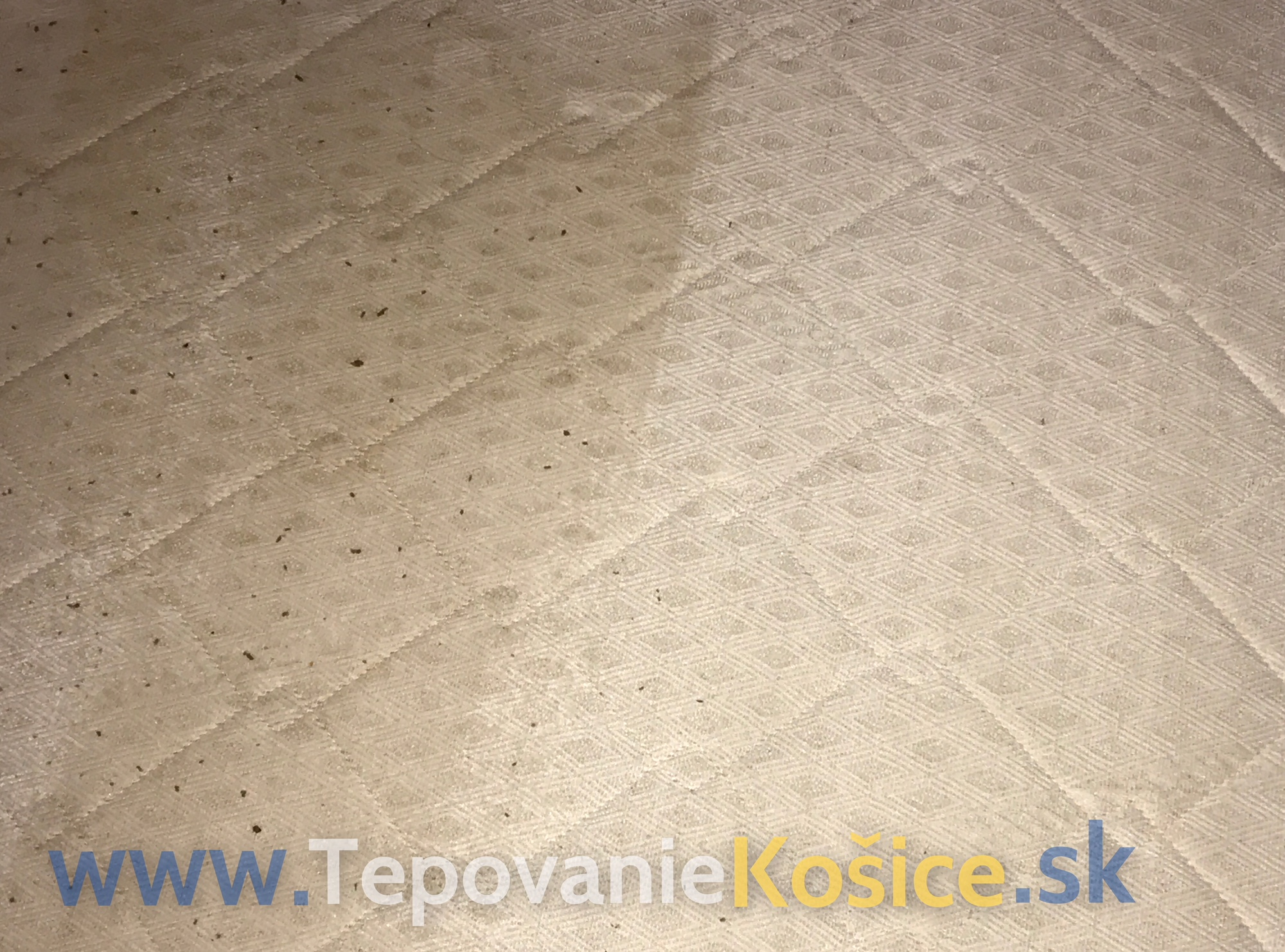 8ecc8ede3 Fotogaléria - Tepovanie a čistenie matracov, kobercov, sedačiek ...